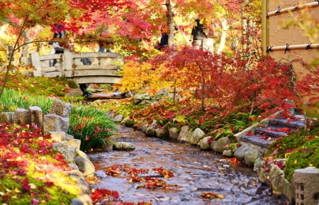 garden scenery: Fall foliage at Eikando Temple in Kyoto, Japan. Stock Photo