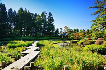 swamp: Gardens in Japan. Stock Photo