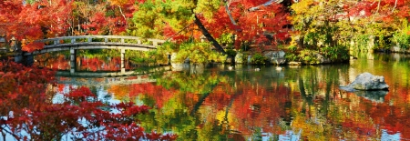 japanese fall foliage: Japanese garden panorama. Stock Photo