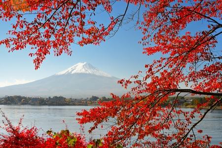 mt fuji: Mt Fuji in the Fall season. Stock Photo