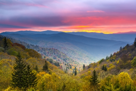 overlook: Autumn morning in the Smoky Mountains National Park.