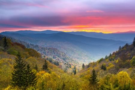 Herbstmorgen in der Smoky Mountains Nationalpark. Standard-Bild
