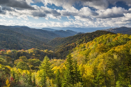 national forest: Smoky Mountains National Forest