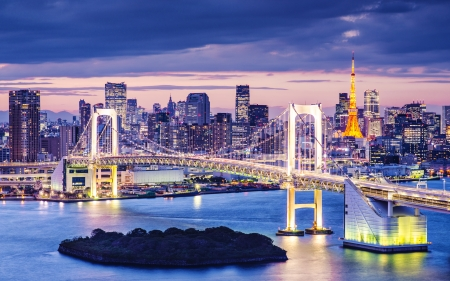 suspension bridge: Tokyo Bay at Rainbow Bridge.