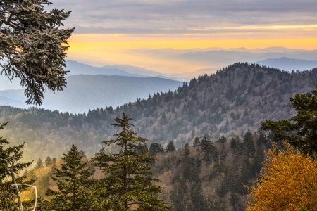 Autumn morning in the Smoky Mountains National Park. Stock Photo - 23815098