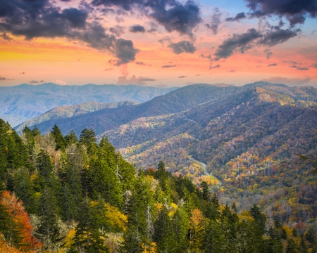 newfound gap: Autumn morning in the Smoky Mountains National Park.