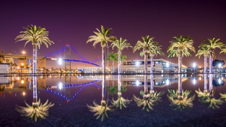 dark: Vincent Thomas Bridge and Palm Tree reflections in San Pedro, Los Angeles, California.