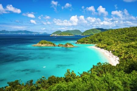 tropical island: Trunk Bay, St John, United States Virgin Islands.