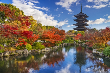 京都の秋のシーズン中に寺五重塔。 写真素材