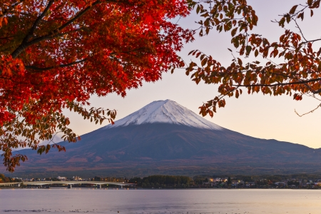 Mt. Fuji with fall Foliage in Japan. photo