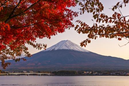 mt fuji: Mt. Fuji with fall Foliage in Japan. Stock Photo