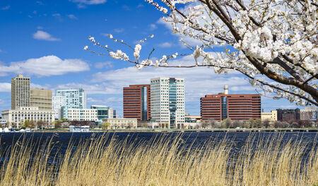 ma: Cambridge, Massachusetts skyline in the spring.