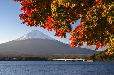momiji: Mt Fuji in the Fall season. Stock Photo
