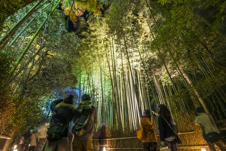 coincidir: Kyoto, Japón - 11 de diciembre de 2012: Los turistas observan la luz anual en el bosque de bambú de Arashiyama Chikurin. Encienda para arriba los acontecimientos a menudo se celebran coincidiendo con las estaciones. Editorial