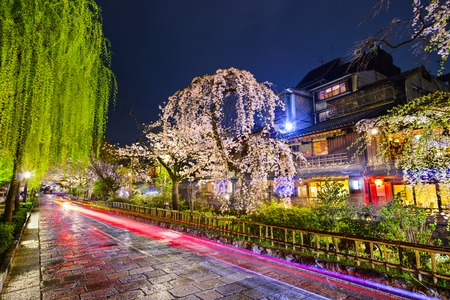 교토, 봄 시즌 동안 역사적인 기온 지구에 일본.