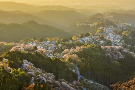 seaonal: Yoshinoyama, Japan townscape in the Spring Stock Photo