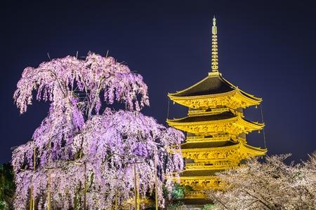 todaiji: Todai-ji pagoda in the springtime in Kyoto, Japan.