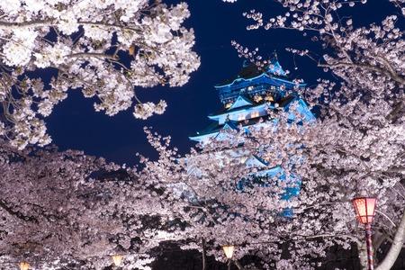Osaka, Japan at Osaka Castle Park in the springtime.