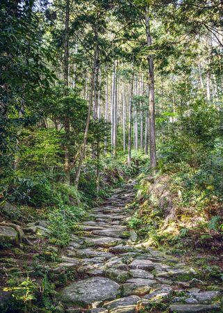 ancient pass: Kumano, Japan at Matsumoto Pass. The pass is part of the Kumano Kodo, a series of ancient pilgrimage routes.