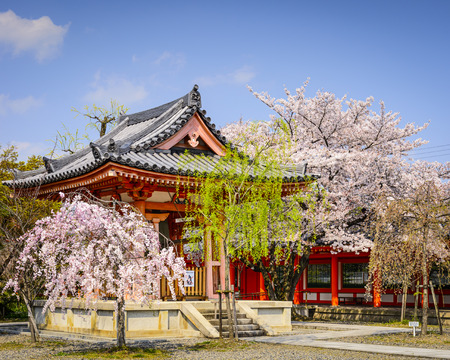 seaonal: Spring Foliage in Kyoto, Japan