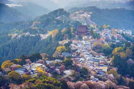 seaonal: Yoshinoyama, Japan at twilight during the spring.