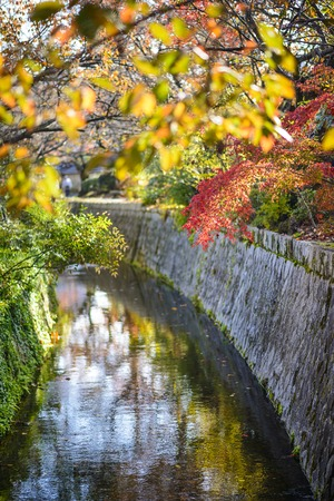 autumn path: Kyoto, Japan at Philosophers Path in the autumn.