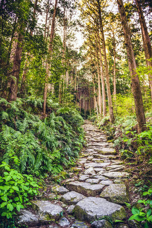 cobblestone street: Kumano, Japan at Matsumoto Pass. The pass is part of the Kumano Kodo, a series of ancient pilgrimage routes.