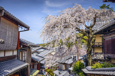 seaonal: Kyoto, Japan at the Higashiyama district in the springtime. Stock Photo