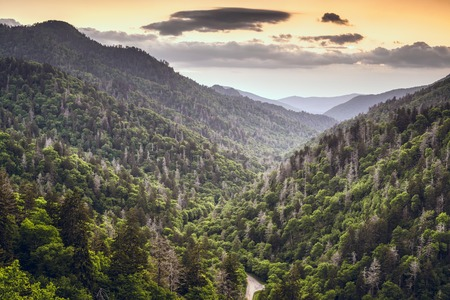 Smoky Mountains, Tennessee, USA mountainscape at newfound gap.