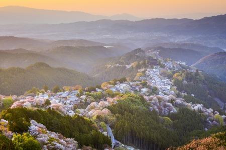 seaonal: Yoshinoyama, Nara, Japan during the spring season. Stock Photo