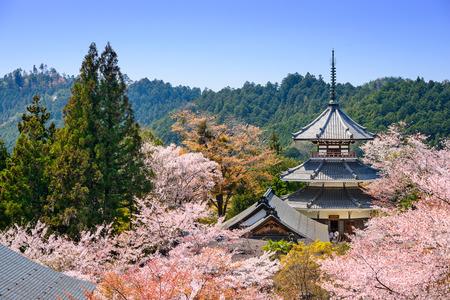 Yoshino, Japan at Kinpusenji Temple.