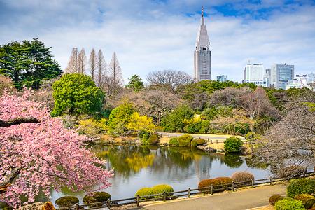 Tokyo, Japan springtime cityscape in Shinjuku