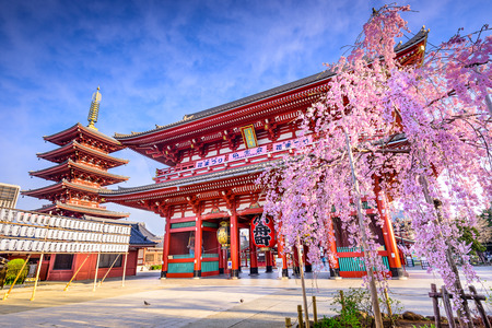 Tokyo, Japan at Sensoji Temples Hozomon Gate in the Asakusa District in the springtime. (White lanterns on the left read the names of several streets and parks such as, kannon street, orange street, etc.  Top sign on gate reads Sensoji Temple Banners