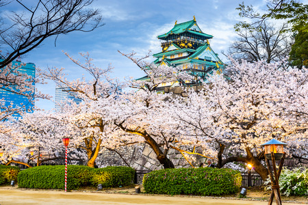 Osaka, Japan at Osaka Castle during the spring season. Publikacyjne