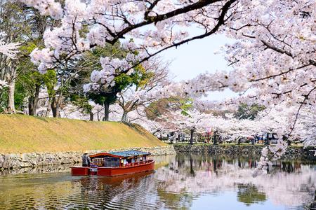 彦根、日本の春の彦根城堀します。