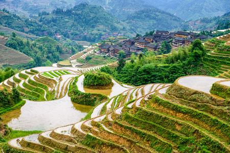 paddy: hillside rice terraces landscape in Yaoshan Mountain, Guilin, China Stock Photo