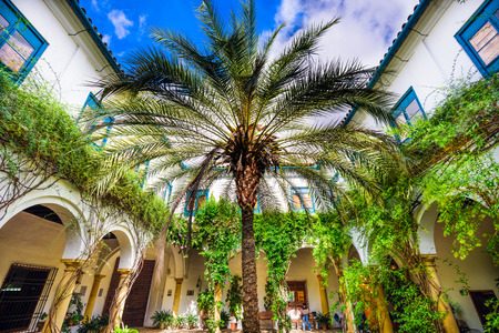palacio: CORDOBA, SPAIN - OCTOBER 11, 2014: Viana Palace at the courtyard gardens. The Palace grounds are a tourist attraction known for several distinct but connected gardens.