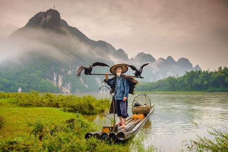pecheur: P�cheur Cormorant et ses oiseaux sur la rivi�re Li � Yangshuo, Guangxi, en Chine. �ditoriale