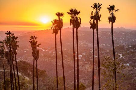 puesta de sol: Griffith Park, Los �ngeles, California, EE.UU..