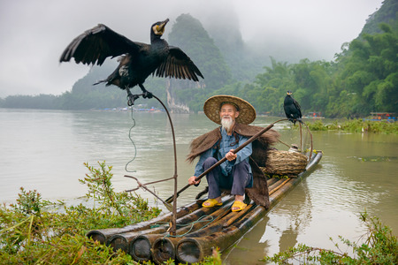 chinese tradition: Cormorant fisherman and his birds on the Li River in Yangshuo, Guangxi, China.