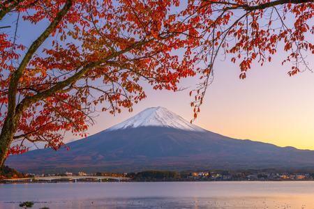 Mt. Fuji, Japan at Lake Kawaguchi during autumn season. photo