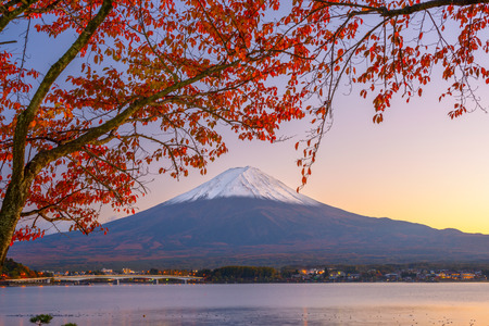 Mt. Fuji, Japan at Lake Kawaguchi during autumn season. photo