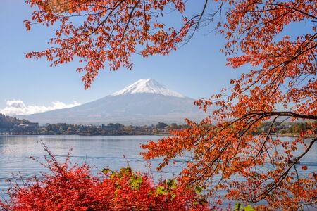 momiji: Mt. Fuji, Japan at Lake Kawaguchi during the autumn season. Stock Photo