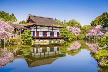ground cherry: Kyoto, Japan spring at Heian Shrines pond garden.