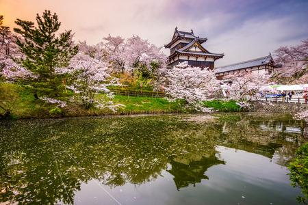 cerezos en flor: Nara, Japón en el castillo de Koriyama en la temporada de primavera