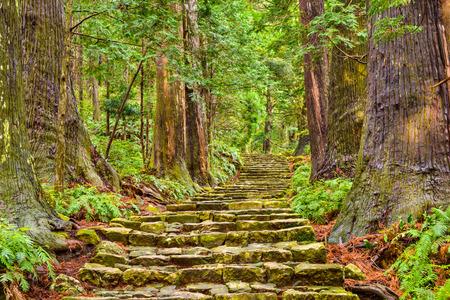 熊野古道大門坂、神聖なトレイルや那智、和歌山県の世界遺産サイトで。