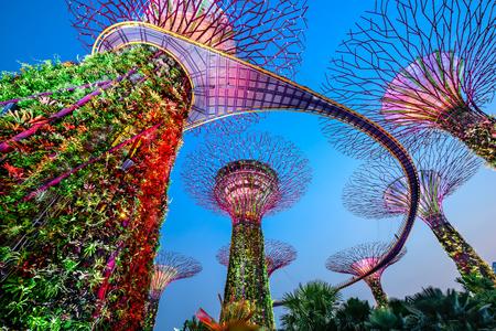 Singapore bij tuinen aan de baai.