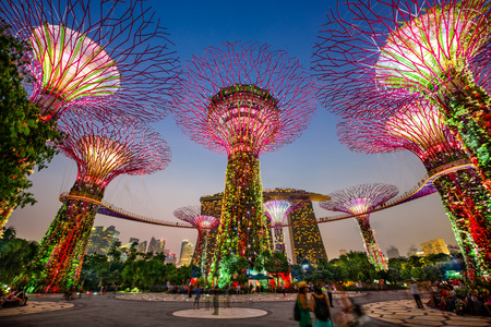 SINGAPORE - SEPTEMBER 5, 2015: Supertrees at Gardens by the bay. The tree-like structures are fitted with environmental technologies that mimic the ecological function of trees. Editöryel