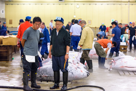 TOKYO, JAPAN - AUGUST 1, 2015: Prospective buyers inspect tuna displayed at Tsukiji Market. Tsukiji is considered the worlds largest fish market.