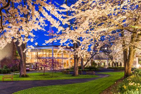 campus de la universidad de la primavera en la noche. Foto de archivo
